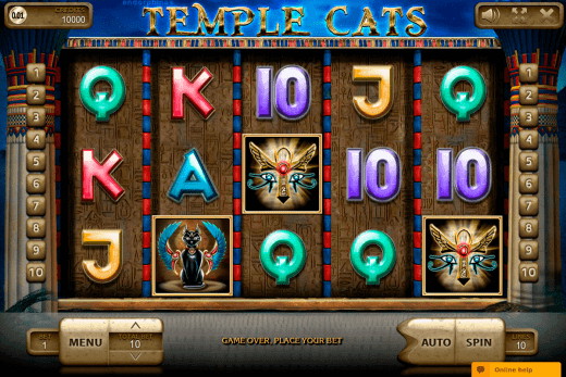 Temple Cats review