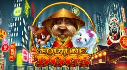 Fortune Dogs screenshot