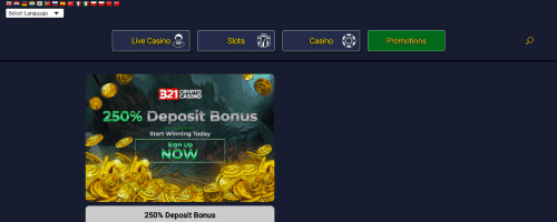 321CryptoCasino Screenshot 1
