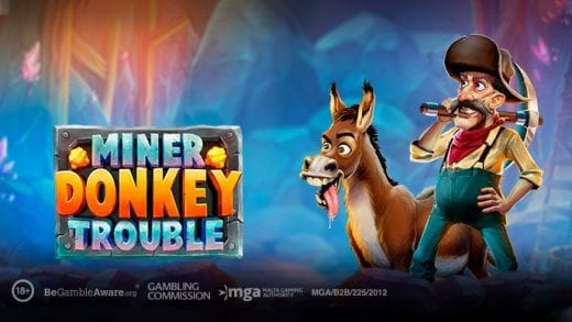 Miner Donkey Trouble review
