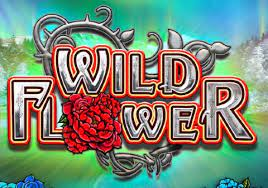 Wild Flower review