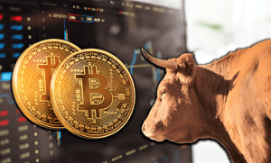 The Bitcoin bull run seems to be coming to an end